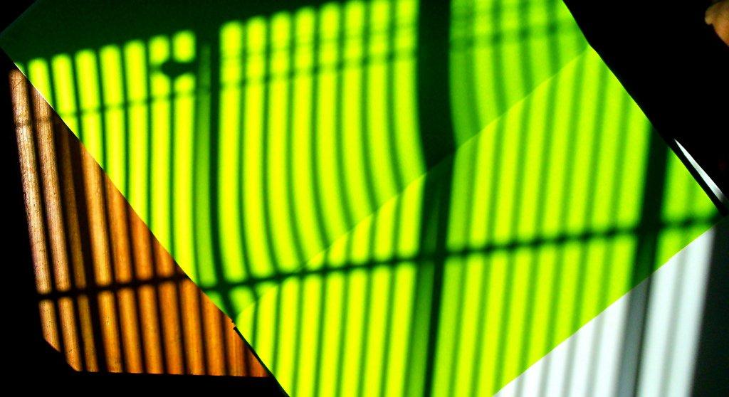 Saber Ambiental como fundamento de efetivação da matriz ecológica da Sustentabilidade - Por Matheus Figueiredo Nunes de Souza e Sérgio Ricardo Fernandes de Aquino
