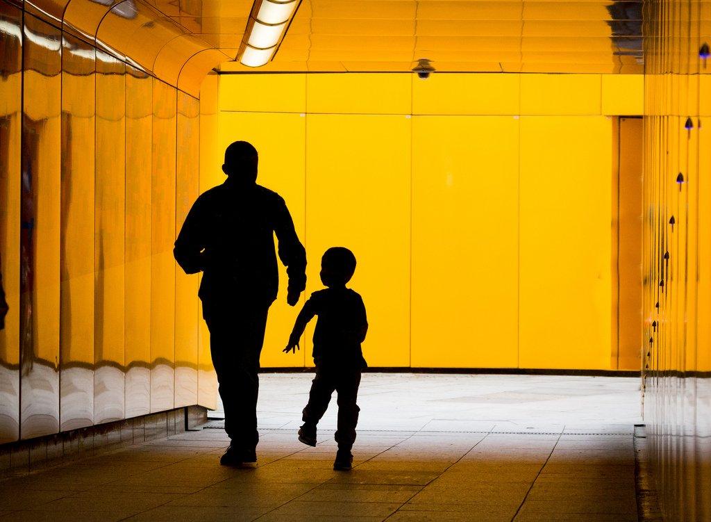 Onde mesmo o direito e a economia se encontram? Pais e Filhos e a Análise Econômica do Direito - Por João Carlos Adalberto Zolandeck