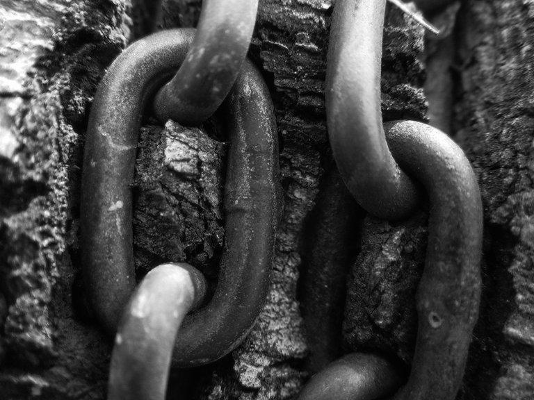 La ceguera de la esclavitud moderna
